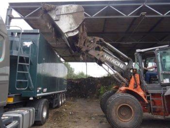 compost landfill